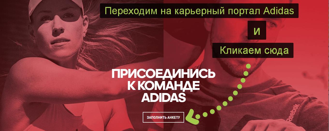 подача заявки на вакансию adidas
