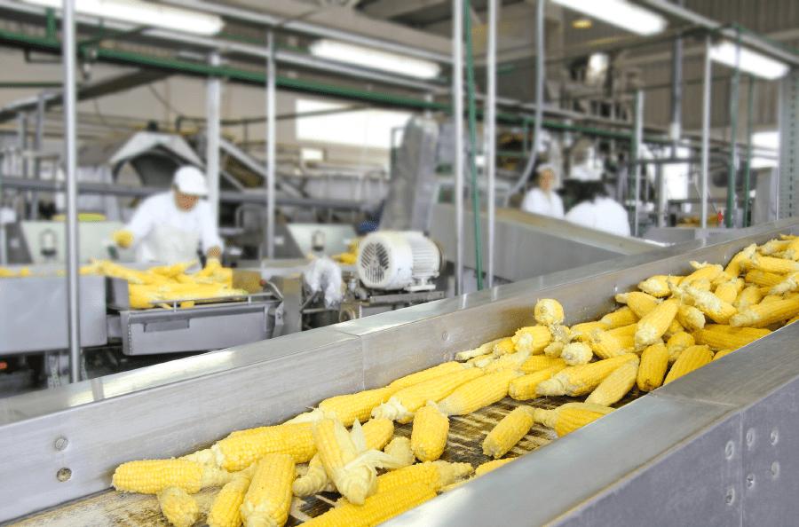 производство в Bonduelle